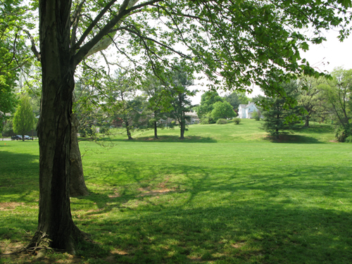 bluemont_open_space