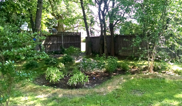 grassy backyard with mulch bed