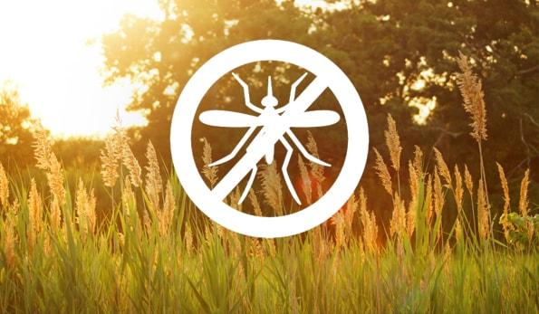 anti mosquito symbol