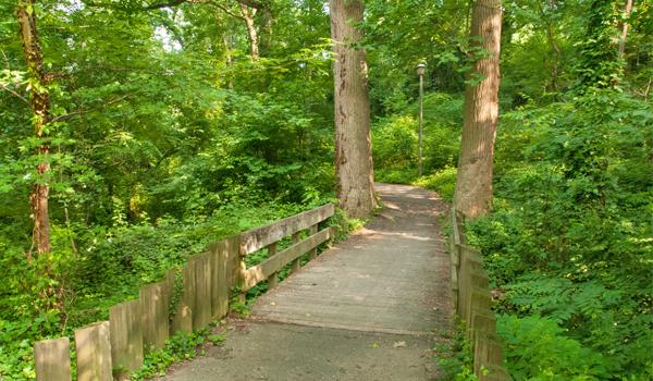 wooded_bridge_arlington