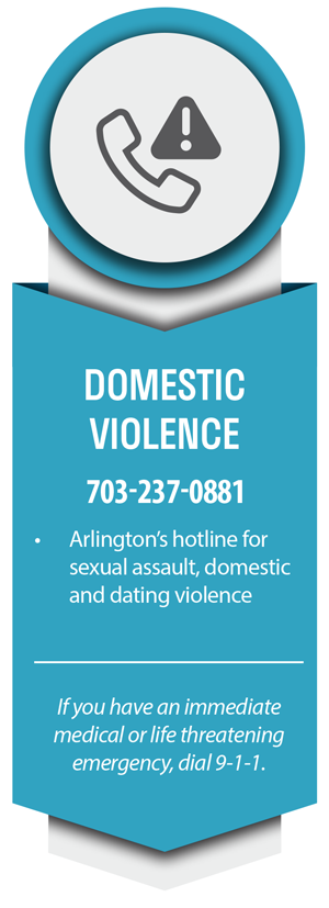 Domestic Violence Information Image