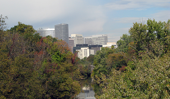 trees with rosslyn in background