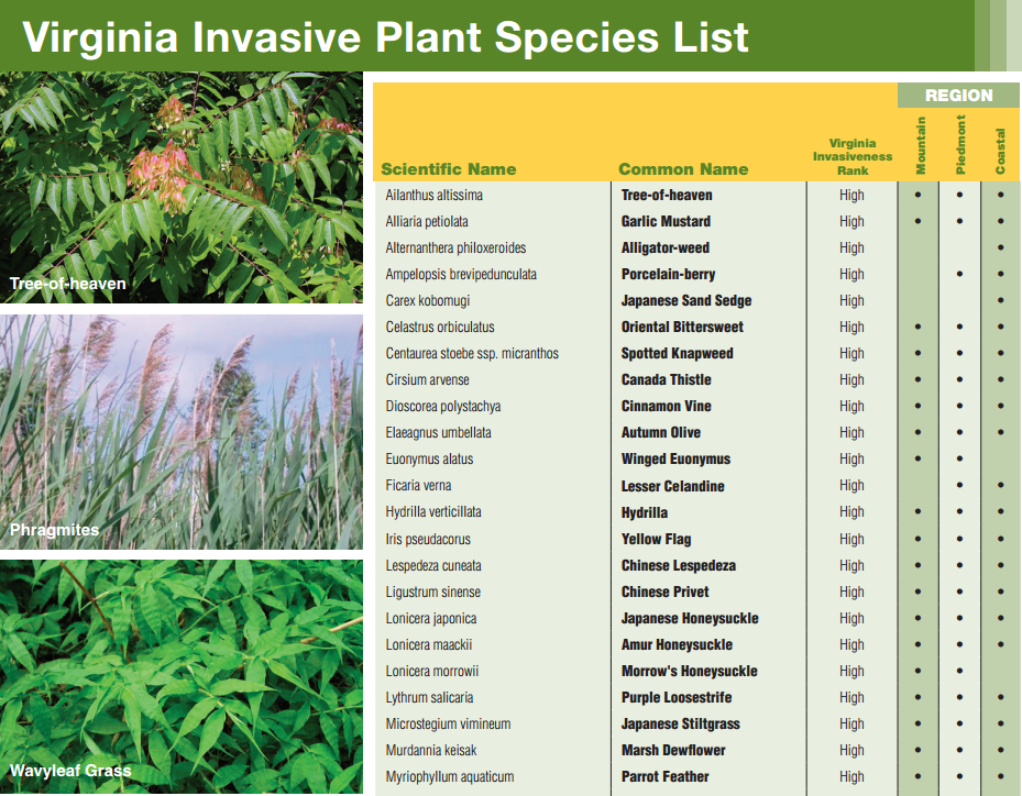 Updates to state regulations and resources on invasive for Community fish list