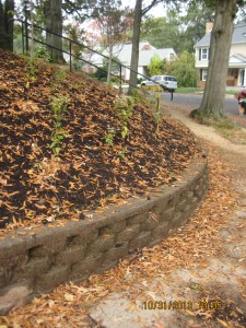 """After"" photo of a StormwaterWise conservation landscape on a slope."