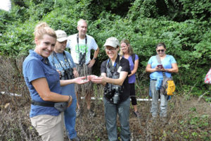 The Arlington BioBlitz herpetology team with a Northern Ring-necked Snake.