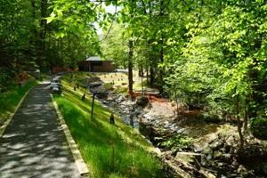 restored stream