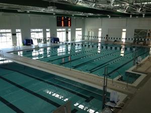 Public Pools In Arlington Va