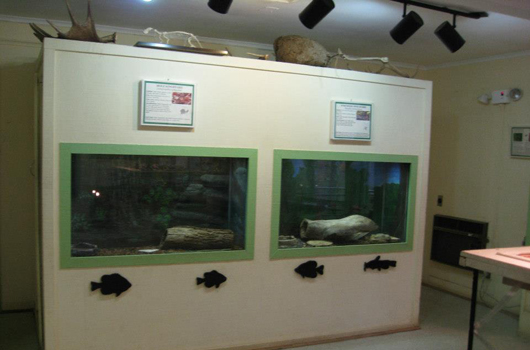 long branch inside displays