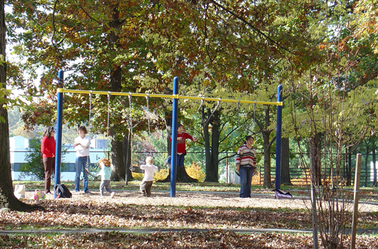 hayes_park_arlington_county_swingset