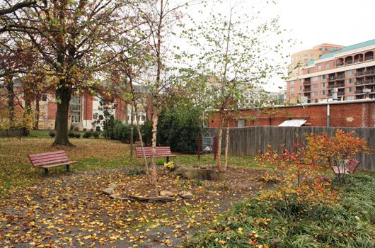 herselle_miliken_park_arlington_county_benches