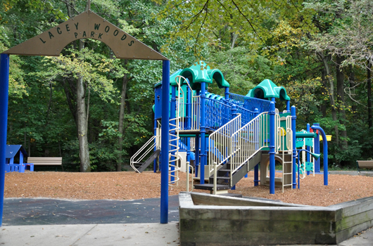 lacey_woods_park_arlington_county_playground_2