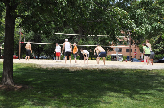 quincy_park_arlington_county_volleyball