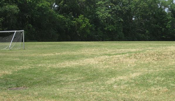 Carver Soccer Field