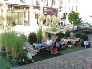 Washington, DC, 2015 PARK(ing) Day