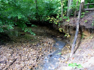 Current stream erosion conditions of Donaldson Run Tributary B.