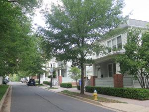 residential street in the cherrydale neighborhood