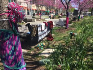 yarn decorating tree and park bench in clarendon