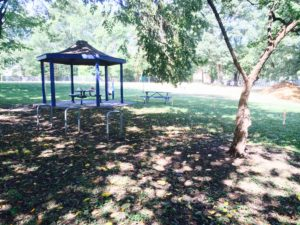 picnic shelter gazebo in trees