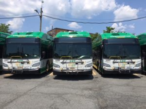 three ART buses, green and white
