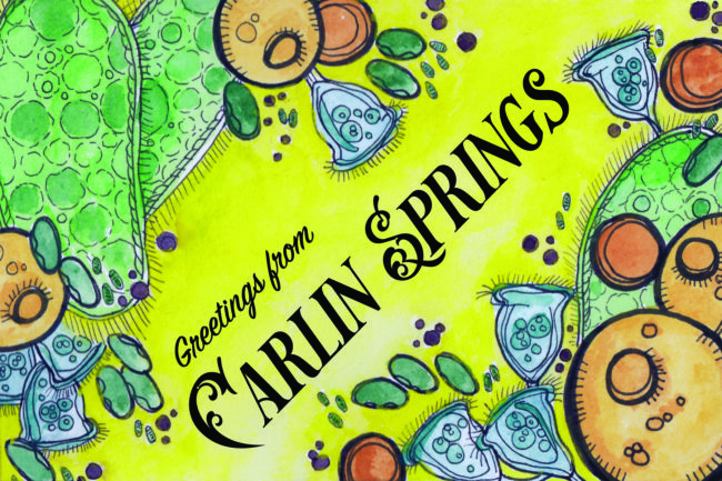 """Welcome to Carlin Springs"" by Shelly Smith"